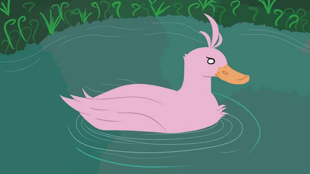 Swan Duck