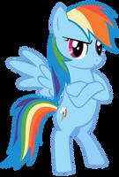 Rainbow Dash - Bridlemaid by SirLeandrea