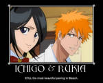 Ichigo and Rukia FINAL WORDS