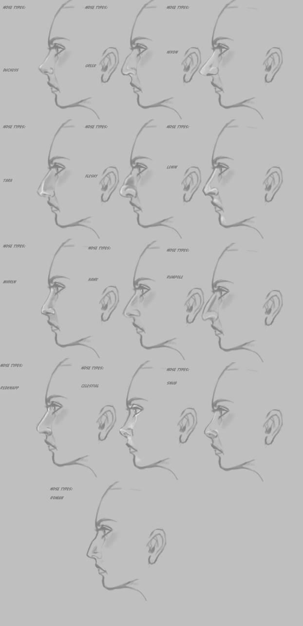 Nose Types by HeartGear on DeviantArt