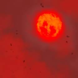 Gerudo Link 30 - Blood Moon by HeartGear