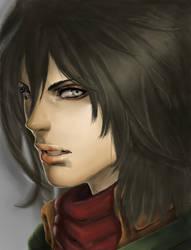 Shyvana to Mikasa redraw