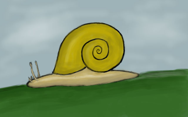 a snail for nori