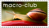 macro-club stamp by macro-club