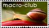 macro-club stamp by macro-club