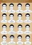 Painted Eyebrow Trends in Tang Dynasty