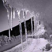 Frozen by penguin91