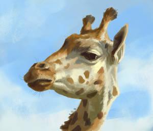 giraffe study from last year