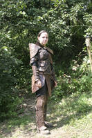 Elsa's Armor right by Sebbal