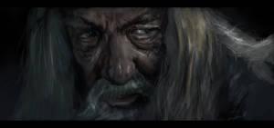portrait of a grey dude