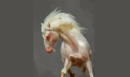 White Horse Painting Updated by jadesky306