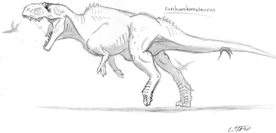 carcharodontosaurus coloring page carcharodontosaurus coloring page coloring pages