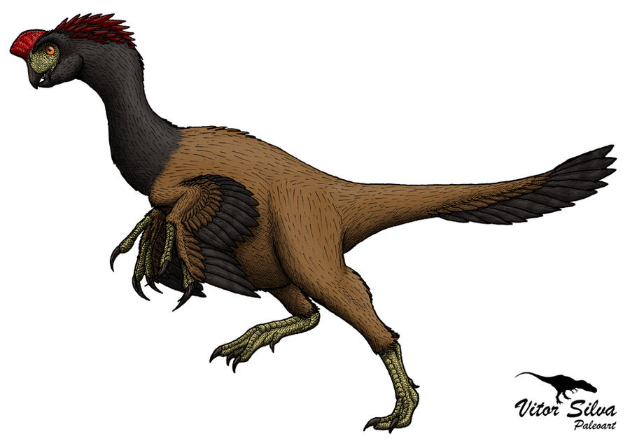 Velociraptor by Vitor-Silva on DeviantArt