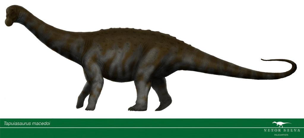 Tapuiasaurus by Vitor-Silva