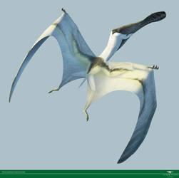 Siroccopteryx by Vitor-Silva