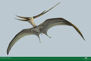 Barbaridactylus by Vitor-Silva