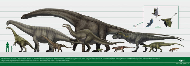 Featherweight to multi-ton: The mass of dinosaurs