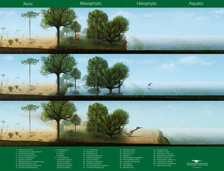 Crato Wetlands - A revised paleoenvironment
