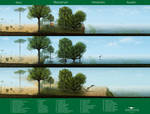 Crato Wetlands - A revised paleoenvironment by Vitor-Silva