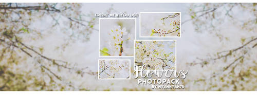 FLOWERS PHOTOPACK BY NYANNYAN95 by nyannyan95