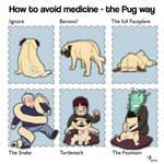 Pug hates medicine