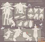 { Avridon Species Sheet: Remastered }