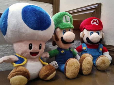 Mario, Luigi and Toad