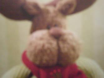 Bunny stares into your soul by SabakuShirokaze