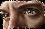 Jensen by sciip