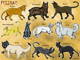 Felidae by pookyhorse