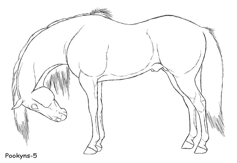 Paard Met Vleugels Kleurplaat Horse Side Lineart By Pookyhorse On Deviantart