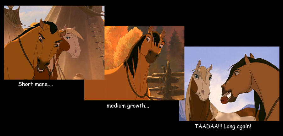 Spirit the Stallion movie review XD by pookyhorse on ...