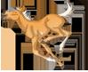 sabino palomino foal stamp by pookyhorse