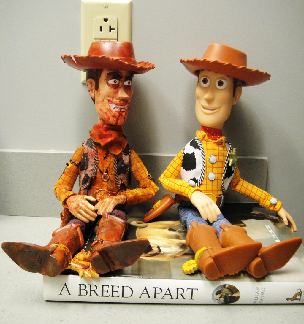 Woody And Misfit Dolls By Pookyhorse On Deviantart