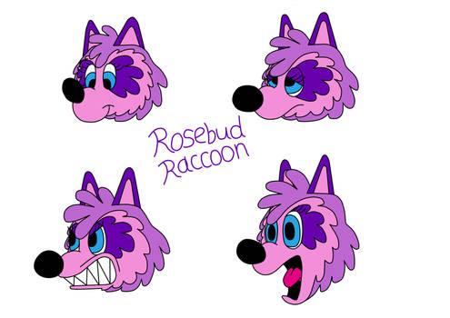 Rosebud Expression