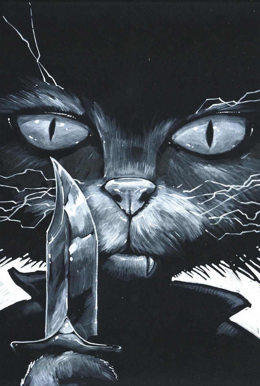 crazy cat by DanielGrzeszkiewicz
