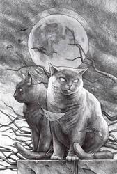 cat and cat by DanielGrzeszkiewicz