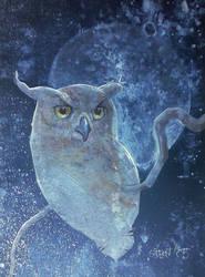 old owl by DanielGrzeszkiewicz