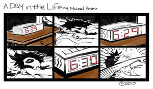 A day in the life...