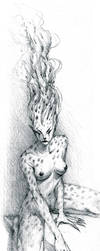cheetah by ANIMAfelis