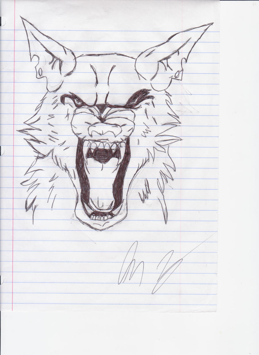 Angry Wolf Face by majinsammy on DeviantArt