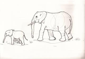 Elephants by jaimeiniesta