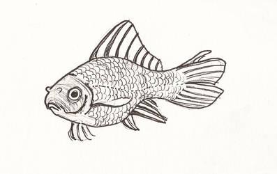 Goldfish by jaimeiniesta