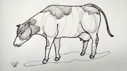 Cow by jaimeiniesta
