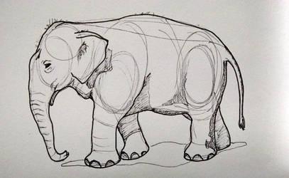Elephant by jaimeiniesta