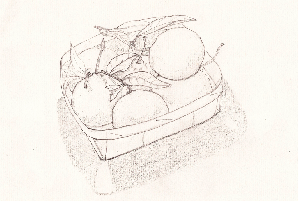 Basket of mandarines by jaimeiniesta