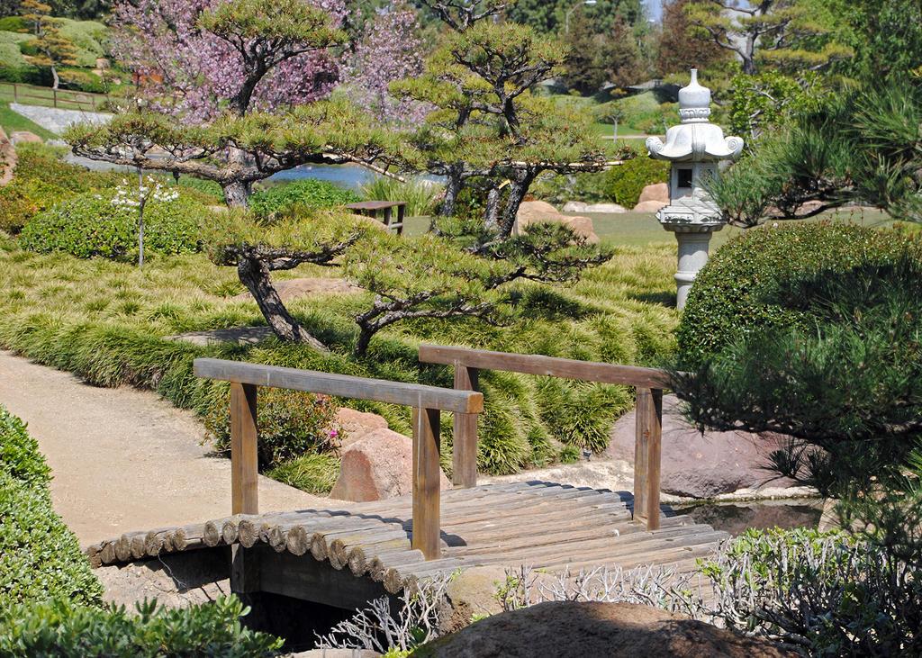 Lormet-Oriental-Garden-0117sml by Lormet-Images