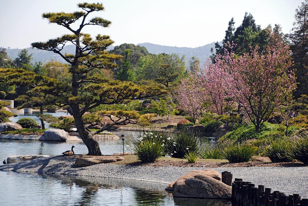 Lormet-Oriental-Garden-0590 01sml by Lormet-Images