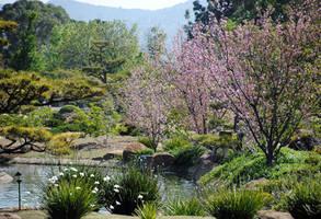 Lormet-Oriental-Garden-0631-01sml by Lormet-Images