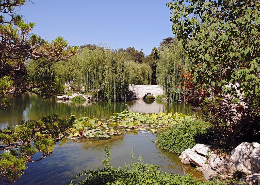 Lormet-Oriental-Garden-0015-01-sml by Lormet-Images